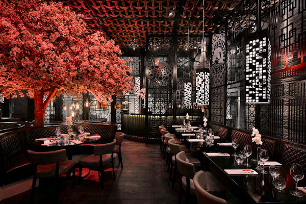 Best Restaurants Manchester ~ Tattu
